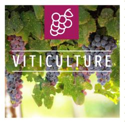 Connaitre la biodynamie en viticulture AB