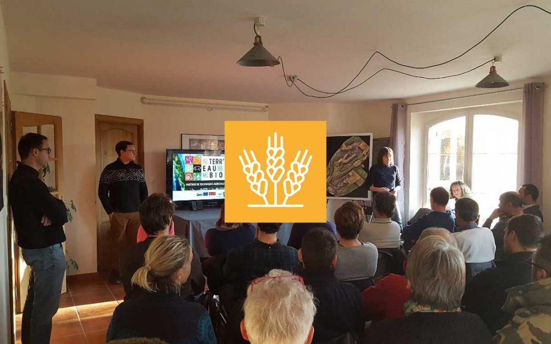 L'agriculture Biologique de Conservation : un idéal atteignable ?
