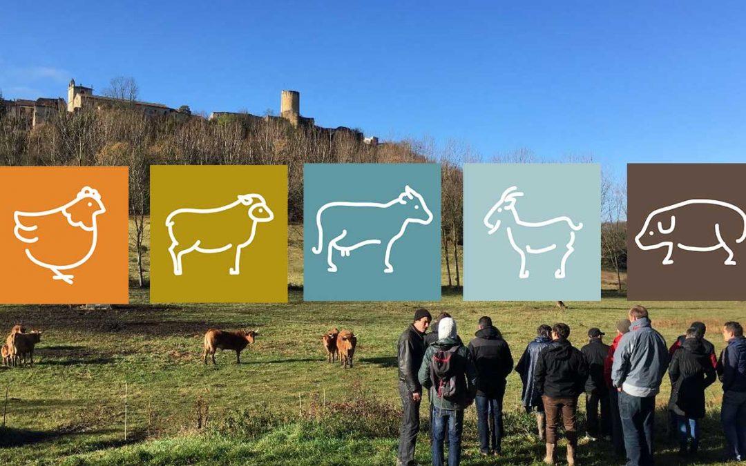 Le lien du sol à l'animal : pour des élevages performants