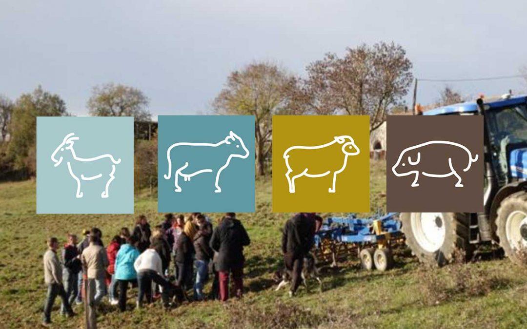 L'agriculture bio, des opportunités pour nos élevages !